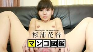 杉浦花音:マンコ図鑑
