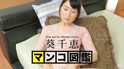 葵千恵:マンコ図鑑