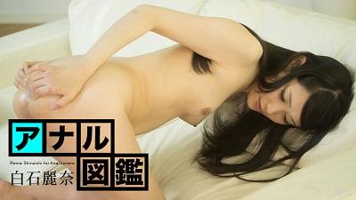 白石麗奈:アナル図鑑